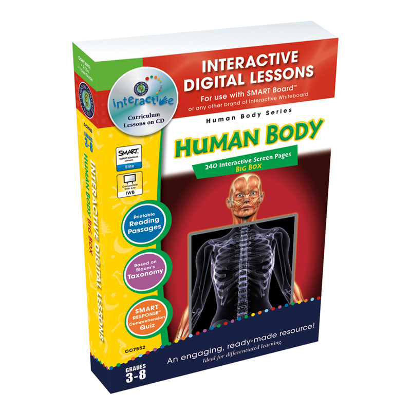 Human Body Big Box Interactive Whiteboard Lessons Office Church